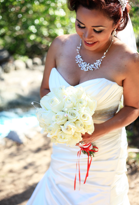 baseball themed bride