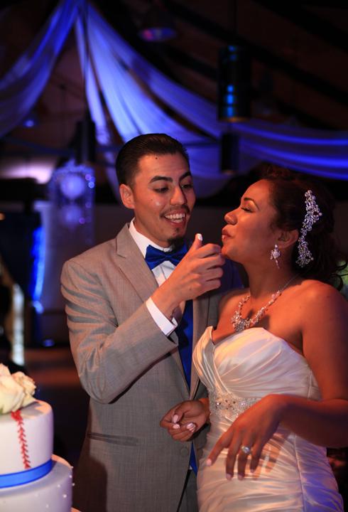 Cutting baseball wedding cake